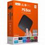 TV приставка Xiaomi Mi Box (International Version) (2Gb/8Gb) (MDZ-16-AB) (Черный)
